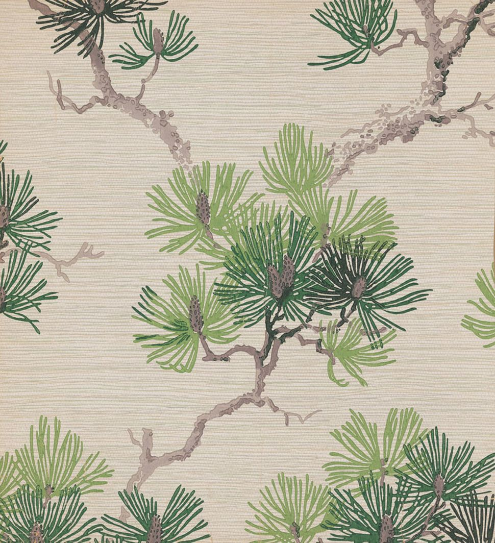 Unused sample. Branch of pine needles and pine cones. Imitation grass cloth. Printed in three greens, two grays on white grou