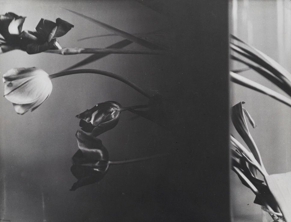 Still Life Composition 1931 Florence Henri Gelatin silver print dated 1977 23 x 30 cm.  Private collection, courtesy Archives