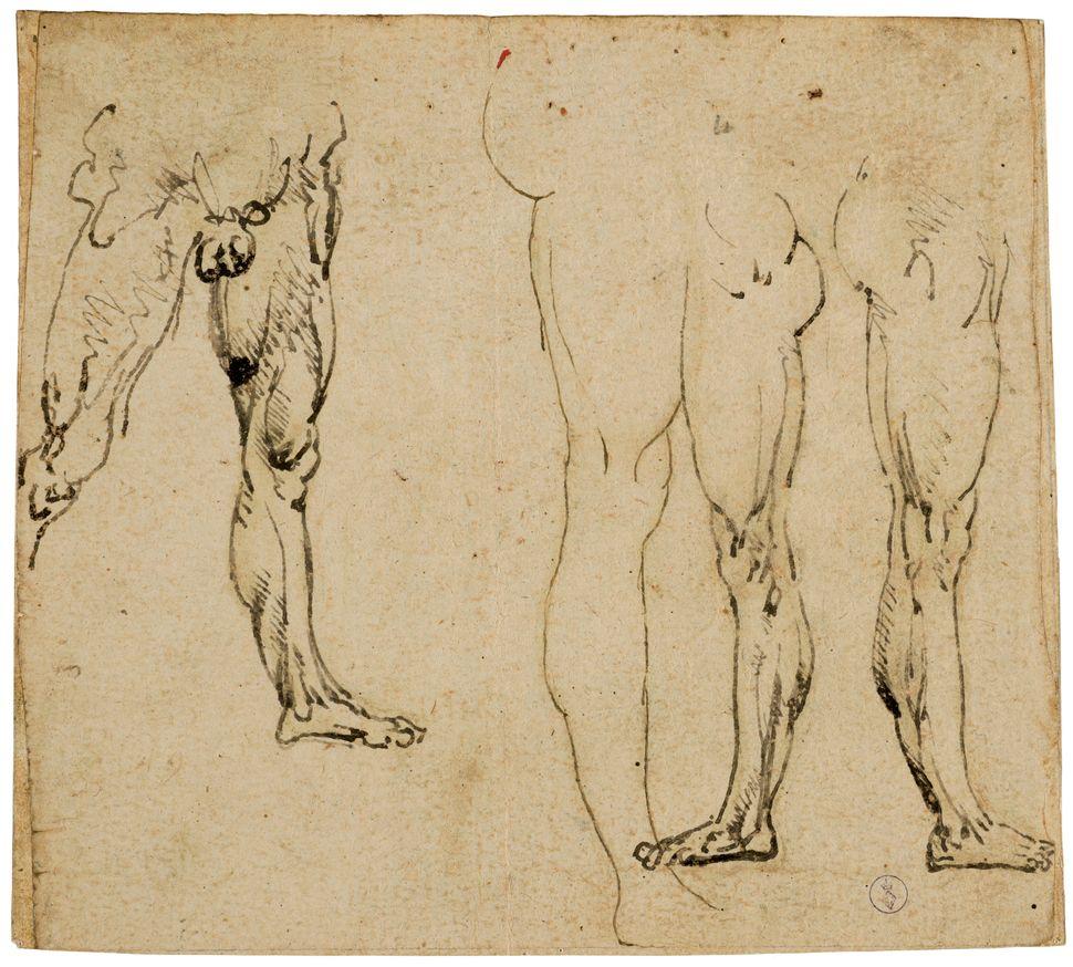"""Studies of Male Legs"" (recto), circa 1485-87, Leonardo da Vinci."