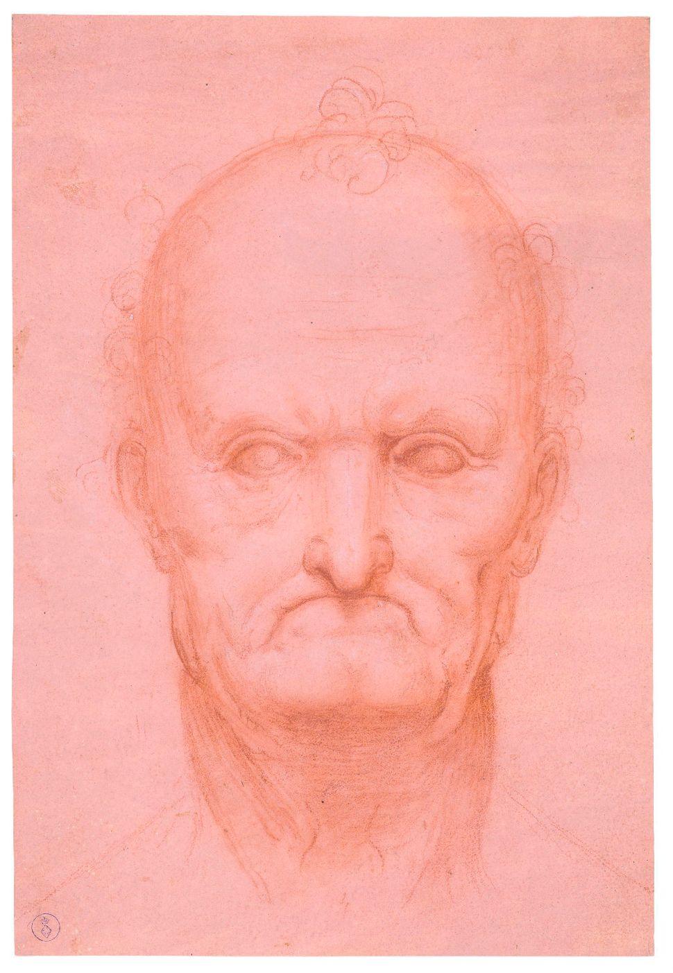 """""""Head of an Old Man,"""" circa 1515, attributed to Leonardo da Vinci or Cesare da Sesto."""