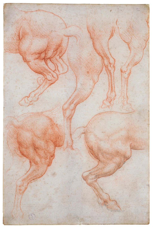 """Studies of the Legs of a Horse,"" Leonardo da Vinci."