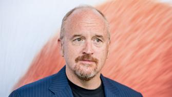 NEW YORK, NY - JUNE 25:  Actor/comedian Louis C.K. attends 'Secret Life Of Pets' New York Premiere on June 25, 2016 in New York City.  (Photo by Roy Rochlin/FilmMagic)