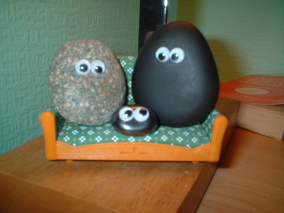 """<span style=""""text-decoration:underline;""""><strong>The Pet Rock:</strong></span>  In 1975, Gary Dahl came up with an idea for t"""