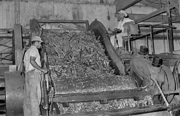 Circa 1960 - Workers at a sugar factory in Cuba. Once one of the top sugar exporters in the world, Cuba's global share in the