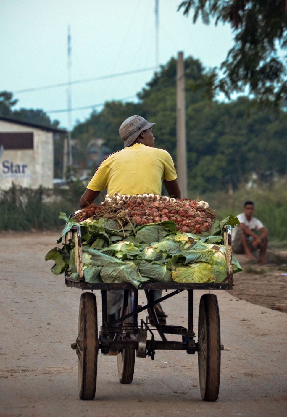 2013 - A fruits and vegetables retailer leaves a wholesale market in Havana.