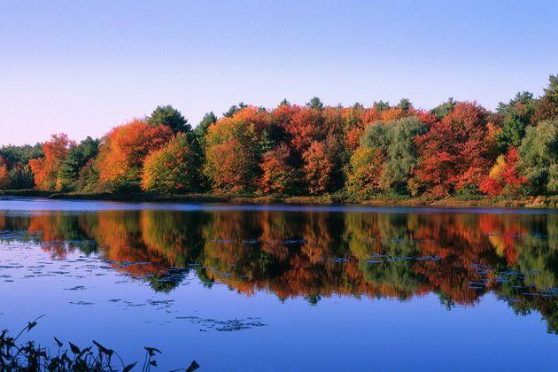 월든 호수(Walden Pond) 헨리 데이비드 소로가 머물었던 호수로 그의 저서인 '월든'을 따 이름