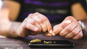 Man`s hands crunching marijuana flower