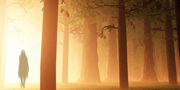 Deep Mysterious Forest Yurei Ghost Appear