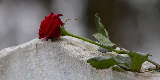Red rose on gravestone in cemetery