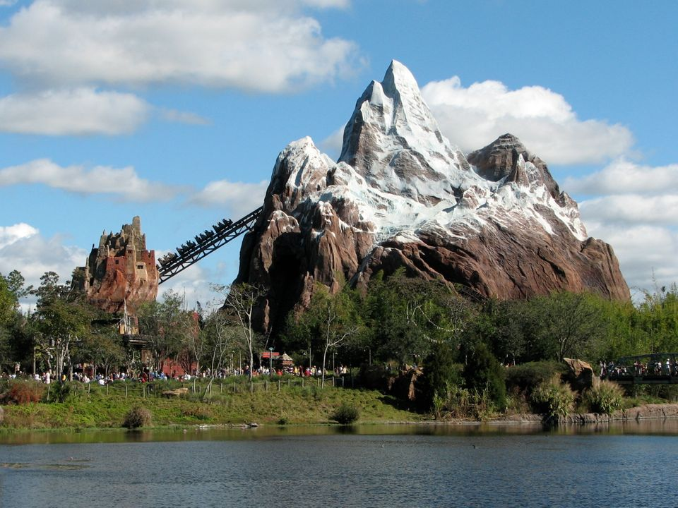 From roller coasters to a trip through your favourite movie adventure, Walt Disney World has it all. The older family members