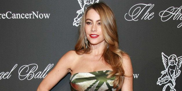NEW YORK, NY - OCTOBER 20:   Actress Sofia Vergara attends 2014 Angel Ball at Cipriani Wall Street on October 20, 2014 in New
