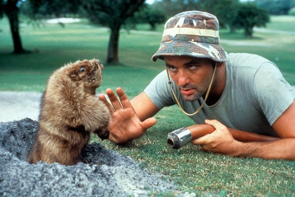 """The shtick of """"Caddyshack"""" wasn't on par with critical preferences when it opened in July 1980. Harold Ramis' golf comedy gar"""