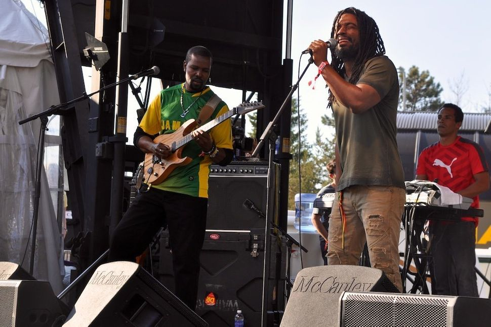 The Wailers perform at Mountain Jam 2015 in Hunter, New York.