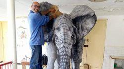 Cet agent municipal de Monastir transforme les déchets en oeuvres d'art