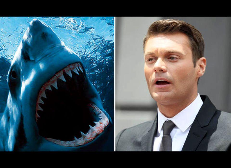 "Perhaps the overly amorous shark that <a href=""http://www.celebuzz.com/photos/ryan-seacrest-celeb-vs-wild-10-stars-attacked-b"