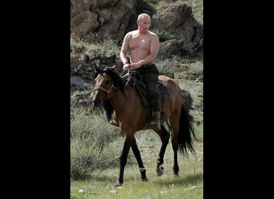 World Photo Caption Contest Shirtless Vladimir Putin On A Horse Huffpost