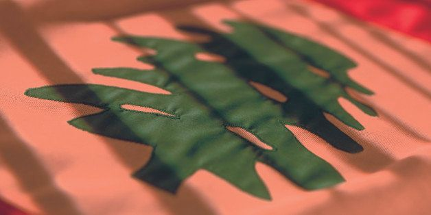 close-up of the flag of Lebanon (toned)