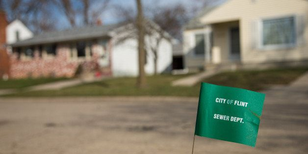 FLINT, MI - MARCH 17:  A City of Flint Sewer Dept. marker flag waves in the wind on a block where lead water lines have start