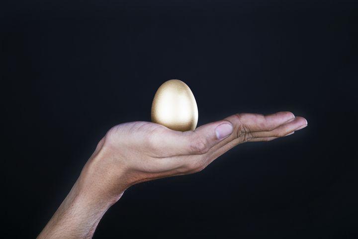 hand holding a golden egg....