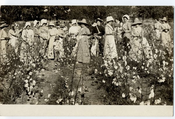 Women out picking cotton, USA, circa 1910.