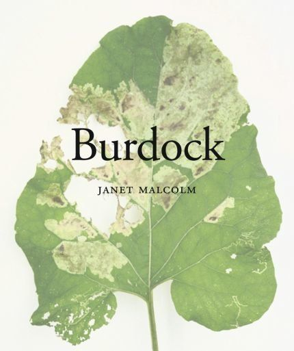 Proust's interest in photography and botany was such that Janet Malcolm's precise and surprising images of a leaf, detailing