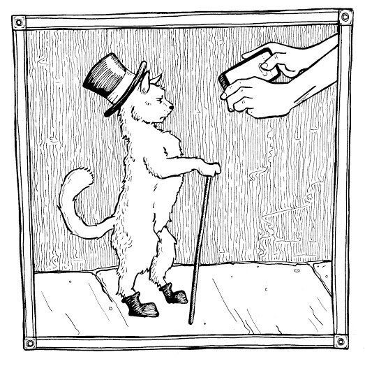 """Puss wore boots so that he would gain more respect, but everywhere he went people just said, """"Omigod, look at that adorable k"""