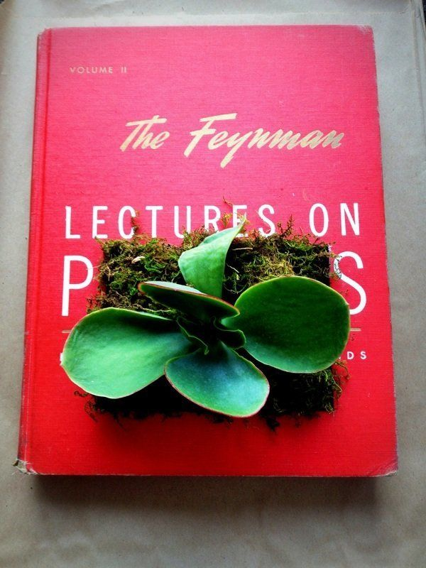 "Depending on your opinion on ""upcycling"" old books for other purposes, these terrarium-inspired vintage books may or may not"