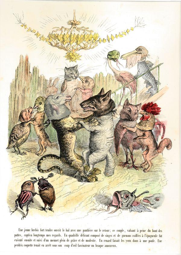 Animals Masquerading, J. J. Grandville