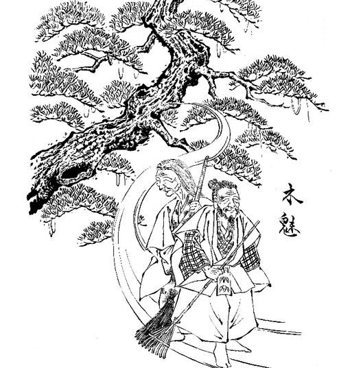 """The kodama, which means """"tree spirit,"""" is not set in behavior or appearance. Toriyama Sekien uses a kodama as the opening ima"""