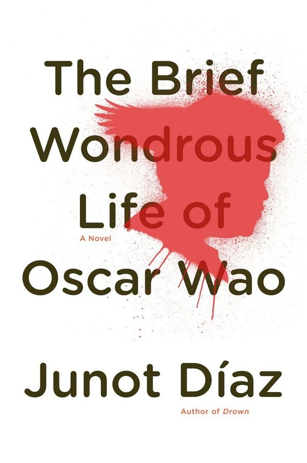 Diaz's only completed novel -- he's written two short story collections as well -- brims with personality and cultural insigh