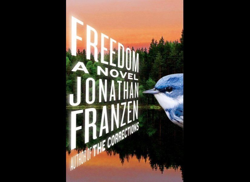 """<strong>""""Freedom"""" by Jonathan Franzen</strong>  One of the <a href=""""http://www.nytimes.com/2010/08/28/books/28franzen.html"""""""