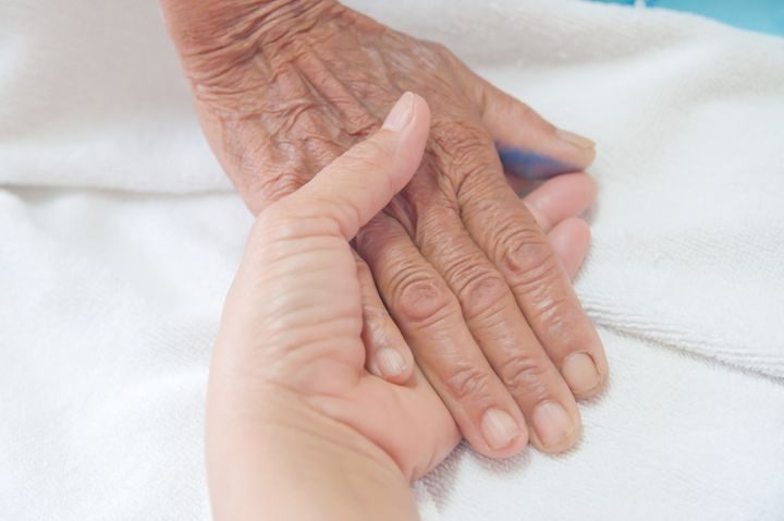a young hand touches and holds...
