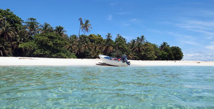 tropical white sand beach with...