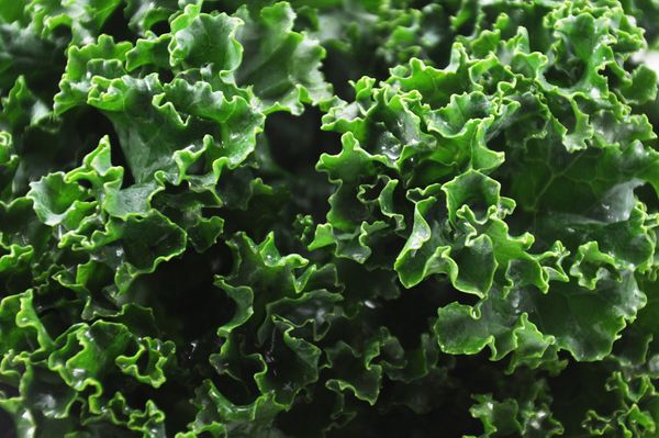 You really can't go wrong with kale. This leafy green provides you with iron, calcium, Vitamin A, Vitamin C, Vitamin K, and t