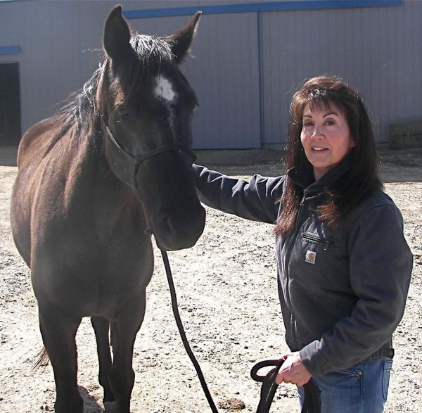 """Several years ago, I started Horse Haven Montana in response to a growing crisis of homeless, abandoned, unwanted horses. An"