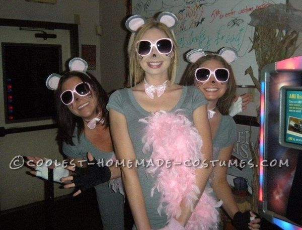 "<a href=""http://ideas.coolest-homemade-costumes.com/2013/10/05/cutest-homemade-three-blind-mice-costume-for-ladies/"" target="""
