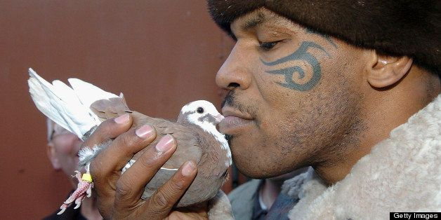 WALSALL, UNITED KINGDOM - NOVEMBER 18:  Former world heavyweight boxing champion Mike Tyson meets up with a pigeon fancier Ho