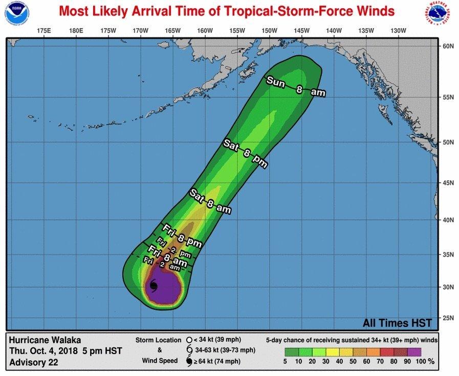 Image result for penis hurricane