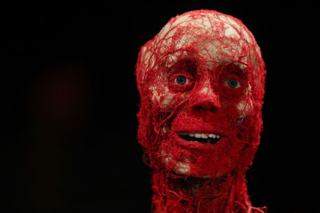 6 Pictures Of The Body Worlds Exhibition That Will Make You Think Differently About