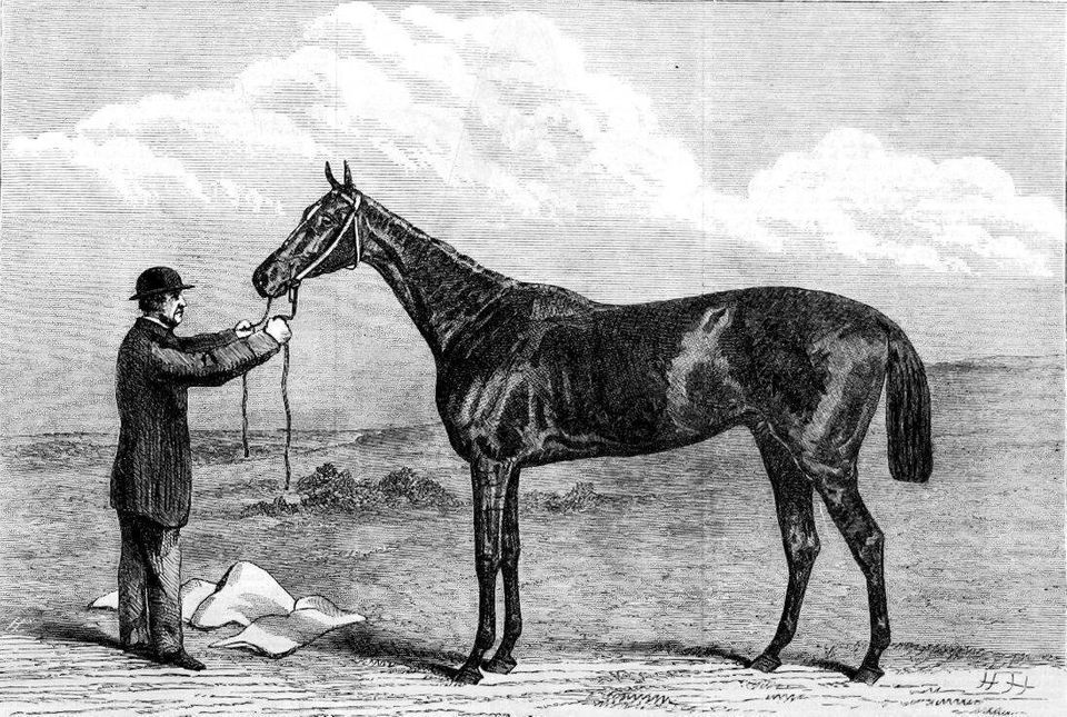 On 22 May 1867, Hermit was a 1,000 to 15 bet to win the Epsom Derby.<br> The stallion was nursing a broken blood vessel and s