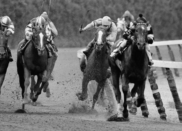 Coastal, second from right, ridden by Ruben Hernandez, makes the move to pass Spectacular Bid (5), with Ronnie Franklin, on t