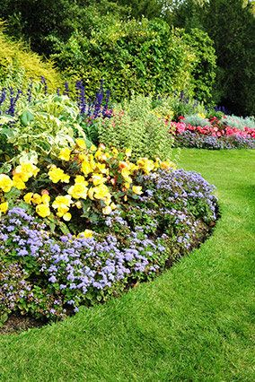 Cultivate community spaces and novice plant-lovers alike by joining the American Horticultural Society's Master Gardener prog