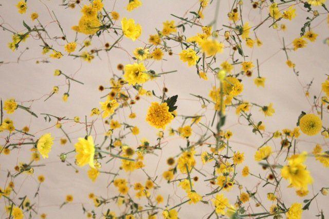 """The Yellow Flower,"" 2014, Nagasaki, Japan"