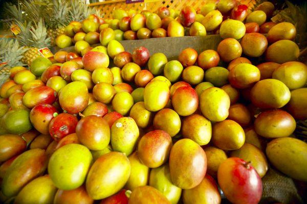 "The <a href=""http://www.oprah.com/health/Is-Organic-Food-Worth-It"" target=""_blank"">organic-versus-conventional debate</a> is"