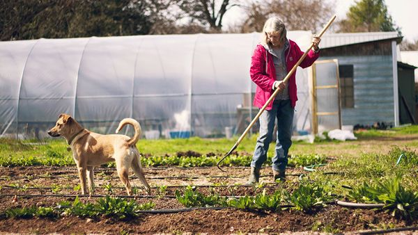 Carol Ann Sayle, who has been farming for nearly 30 years, grows organic produce in Austin.