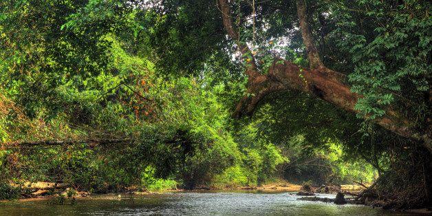 Sungai Melinau river in Gunung Mulu National Park, Malaysia.