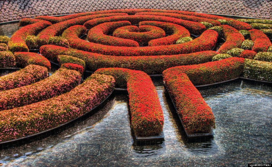 The Labyrinth in full bloom at the Getty Museum Gardens in Los Angeles.