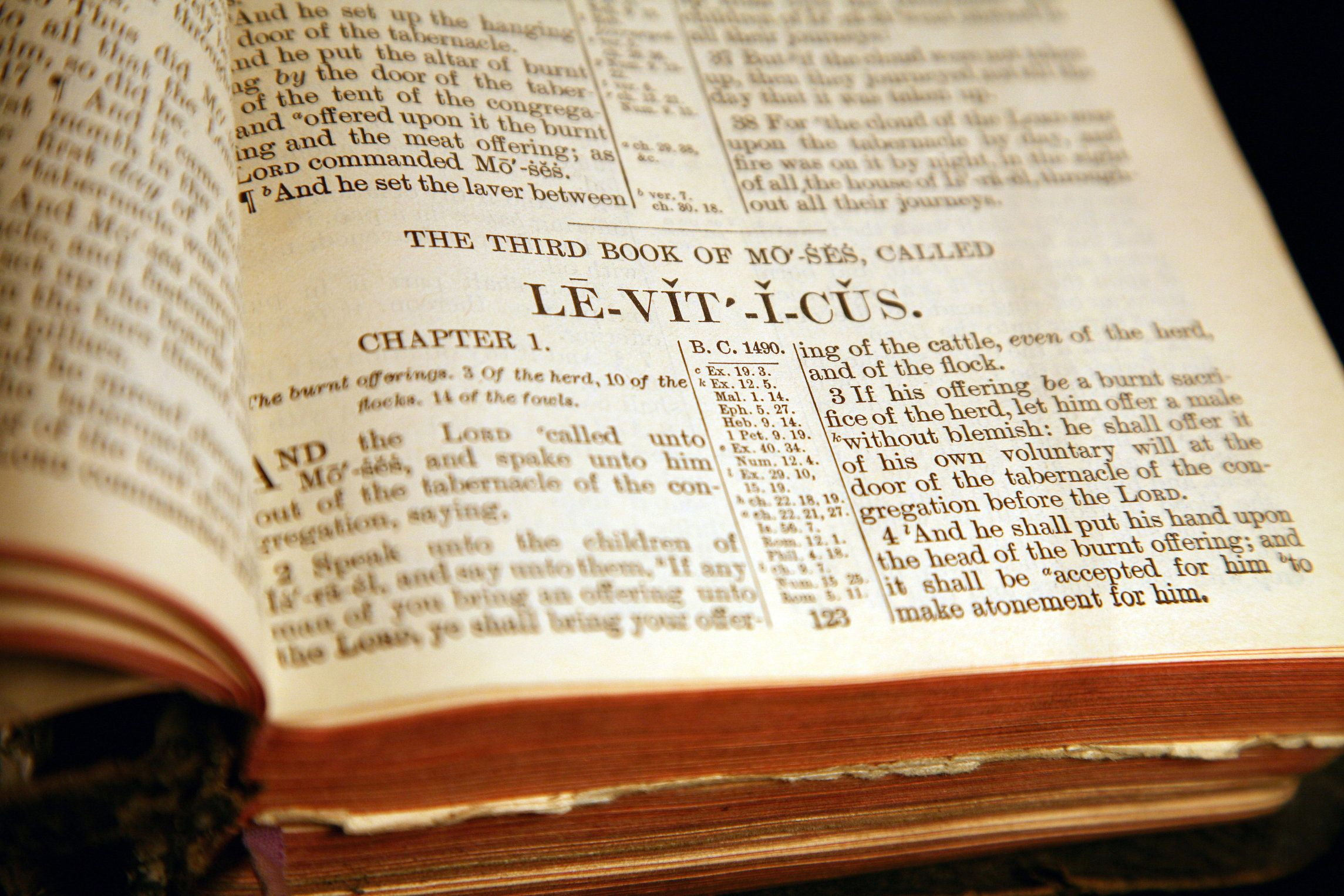 Homosexual response to leviticus 18 22