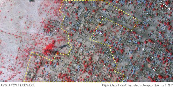 지난 1월 2일 나이지리아 북동부의 보르노주 바가 지역을 찍은 위성사진.