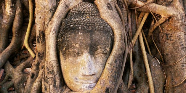 South East Asia, Thailand  , Ayuthaya, Wat Mahathat, Buddha head entwined in roots of Banyan Tree